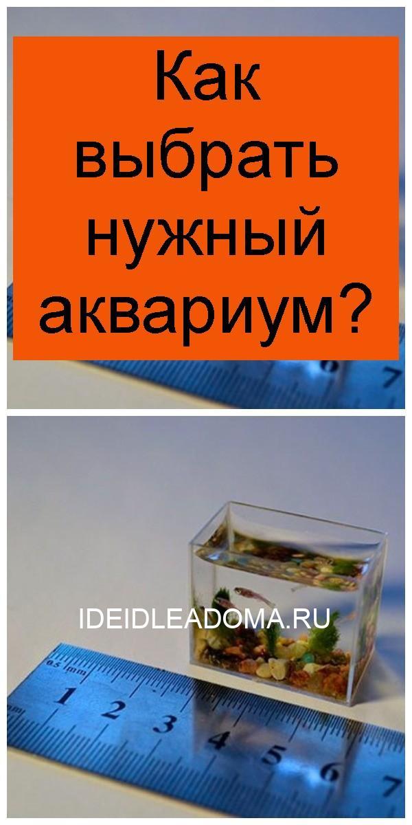 Как выбрать нужный аквариум 4