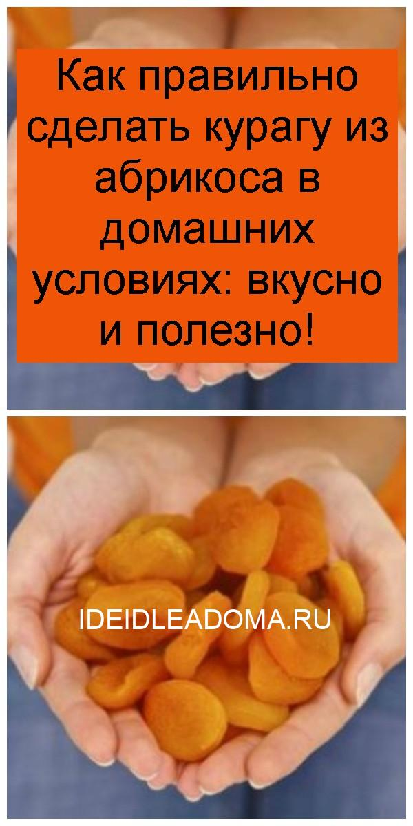 Как правильно сделать курагу из абрикоса в домашних условиях: вкусно и полезно 4