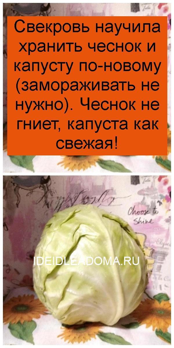 Свекровь научила хранить чеснок и капусту по-новому (замораживать не нужно). Чеснок не гниет, капуста как свежая 4