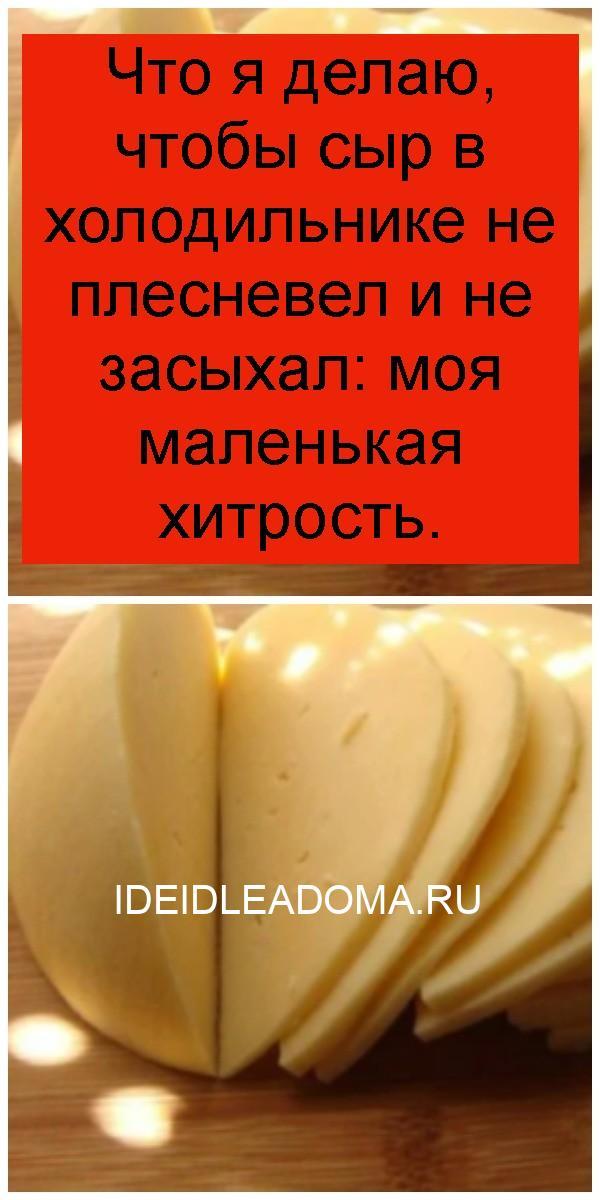 Что я делаю, чтобы сыр в холодильнике не плесневел и не засыхал: моя маленькая хитрость 4